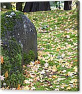 Fall Color Rocks Acrylic Print