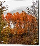 Fall Color Snow Storm Acrylic Print