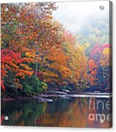 Fall Color Williams River Acrylic Print by Thomas R Fletcher