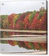 Fall Colors - 3 Acrylic Print