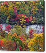 Fall Colors Along Tanasee Road Acrylic Print