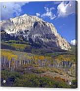 Fall Colors At Gunnison National Forest Acrylic Print
