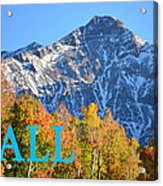 Fall Colors Cover Work Acrylic Print