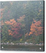 Fall Colors In Acadia National Park Maine Img 6483 Acrylic Print
