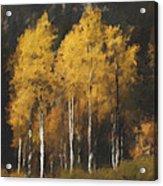 Fall Colors In Washington Cascades Acrylic Print