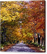Fall Colors Near Sister Bay Acrylic Print