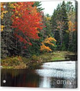 Fall Colors On A Lake Acrylic Print