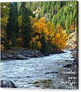 Fall Colors On The River Acrylic Print