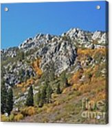 Fall Colors S Lake Tahoe California Acrylic Print