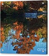 Fall Colors Water Reflection Acrylic Print by Robert D  Brozek