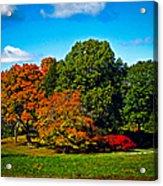 Fall Colours In Massachusetts Acrylic Print