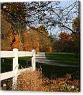 Fall Comes To The Hollow Acrylic Print