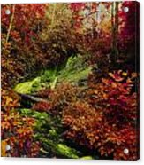 Fall Creek Fastasy Acrylic Print