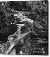 Fall Creek Flow II Acrylic Print