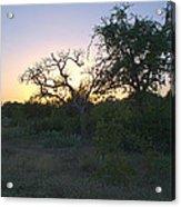 Cedar Park Texas Fall Creek Sunset Acrylic Print