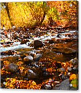 Fall Flow At Mcgee Creek Acrylic Print