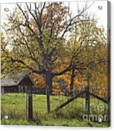 Fall Foilage In Country Acrylic Print