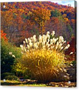 Fall Foilage In The Mountains Acrylic Print