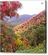 Fall Folage Along The Blueridge Acrylic Print