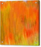 Fall Foliage Abstract Acrylic Print