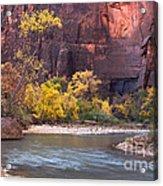 Fall Foliage Along The Virgin River Acrylic Print