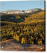 Fall Foliage And Snow-dusted Peaks Acrylic Print