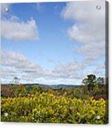 Fall Foliage Hilltop Landscape Acrylic Print
