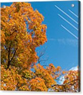 Fall Foliage With Jet Planes Acrylic Print
