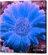 Fall For Me Purple Blue Acrylic Print