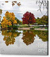 Fall Fort Collins Acrylic Print by Baywest Imaging