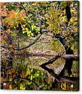 Fall From The Water Acrylic Print