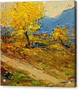 Fall In Albania Acrylic Print