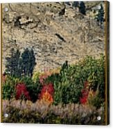 Fall In Carson Valley  Acrylic Print