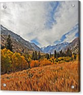 Fall In Lundy Canyon Acrylic Print