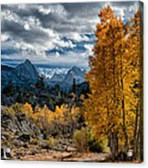 Fall In The Eastern Sierra Acrylic Print by Cat Connor