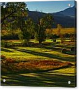 Fall In The Fields Acrylic Print