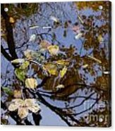 Fall In The Lake In Vienna No. 1 Acrylic Print