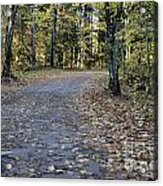 Fall In The North Woods Acrylic Print