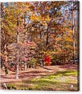 Fall In The Ozarks Acrylic Print