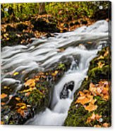 Fall In The Poconos Acrylic Print