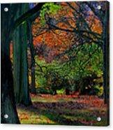 Fall Is Coming Acrylic Print