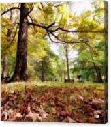 Fall Iv Acrylic Print