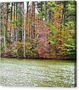 Fall Landscape 2 Acrylic Print