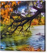 Fall Landscape 4 Acrylic Print