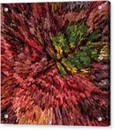 Fall Leaves  Acrylic Print by John Farnan