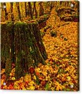 Fall Leaves Mosaic Acrylic Print by Dan Mihai