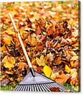 Fall Leaves With Rake Acrylic Print