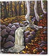 Fall Leaving Acrylic Print