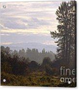 Fall Morning 2 Acrylic Print