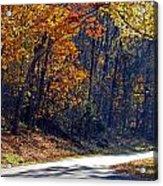 Fall On The Parkway Acrylic Print